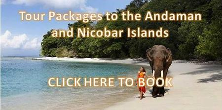 Andaman Government Tour Packages